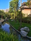 Κήπος σπιτιών Στοκ φωτογραφία με δικαίωμα ελεύθερης χρήσης