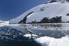 南极反映 库存图片