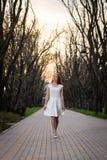 Το όμορφο ξανθό κορίτσι με τις μακριές κυματιστές μπούκλες σε ένα άσπρο φόρεμα περπατά να εξισώσει το πάρκο μεταξύ των μεγάλων δέ Στοκ Φωτογραφία