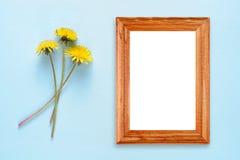蒲公英花和照片框架 库存照片