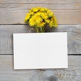 蒲公英花和空白的明信片 图库摄影