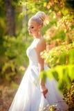 白色礼服的美丽的白肤金发的新娘 库存照片