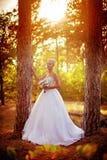 白色礼服的美丽的白肤金发的新娘 库存图片