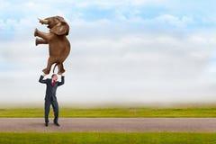 Επιχειρηματίας που κρατά έναν ελέφαντα με ένα δάχτυλο Στοκ φωτογραφίες με δικαίωμα ελεύθερης χρήσης