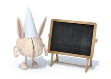 与耳朵笨伯和帽子的人脑在黑板前面 免版税库存照片