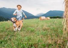 Мальчик и собака бегут совместно на поле с стогами сена Стоковая Фотография RF