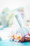 与草本压缩的赤素馨花花在夏天自然背景盖印 温泉或健康 免版税库存图片