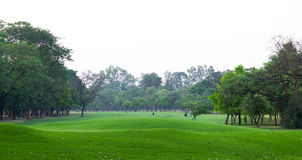Ландшафт земли гольфа Стоковая Фотография