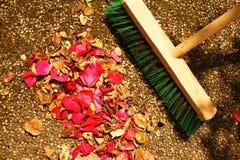 倾斜玫瑰花瓣和死者叶子 库存图片