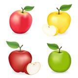 Яблоки, пинк, бабушка Смит, красный и золотой - очень вкусный Стоковое Фото