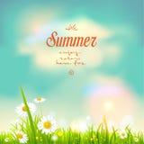夏天开花传染媒介 图库摄影
