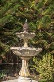 从殖民地庭院的喷泉 免版税图库摄影