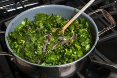 Μαγειρεύοντας κατσαρό λάχανο Στοκ εικόνες με δικαίωμα ελεύθερης χρήσης