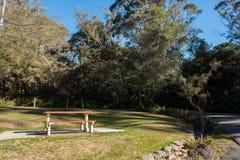有蓝天的公园 库存照片