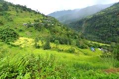 大阳台米领域在尼泊尔 免版税库存图片