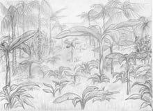 密林横向 库存照片