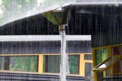 Δυνατή βροχή που συλλέγεται σε ένα κεφάλι ηγετών Στοκ εικόνα με δικαίωμα ελεύθερης χρήσης