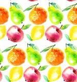 水彩苹果和桔子柑桔例证 免版税库存图片