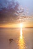Αργό νερό ανατολής Στοκ εικόνες με δικαίωμα ελεύθερης χρήσης
