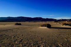 沙漠干盐湖横向盐 免版税库存图片