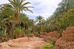 绿洲在摩洛哥 图库摄影