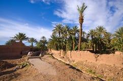 绿洲在摩洛哥 免版税库存照片
