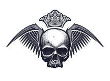 Черно-белый человеческий череп Стоковая Фотография
