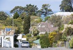 住在新西兰 免版税库存照片