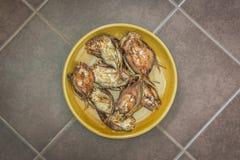 盘油煎的干燥鱼(高钙食物) 免版税库存图片