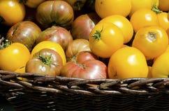 上色祖传遗物红色蕃茄黄色 库存照片
