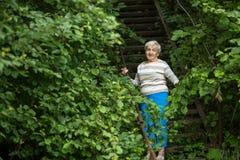 一名年长妇女在绿色树中的公园站立 自然 库存图片