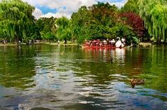 Δημόσιος κήπος της Βοστώνης, Μασαχουσέτη, ΗΠΑ Στοκ Εικόνες