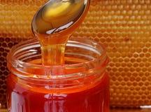 蜂蜜查出的瓶子 图库摄影