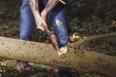 乱砍由轴树的伐木工人 免版税库存图片