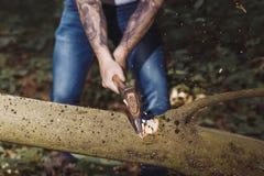 乱砍由轴树的伐木工人 图库摄影