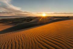 与金黄日落的美丽如画的沙漠风景 免版税图库摄影