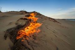 在沙丘的火 戈壁 免版税库存照片