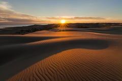 与金黄日落的美丽如画的沙漠风景 免版税库存照片