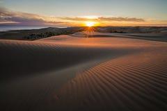 与金黄日落的美丽如画的沙漠风景 免版税库存图片