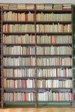 Большие книжные полки Стоковые Изображения RF