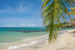пляж тропический Стоковое фото RF