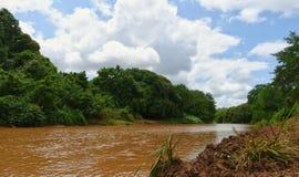 塔纳河 库存图片