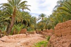 Όαση στο Μαρόκο Στοκ Εικόνες