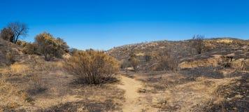 Зона ожога лесного пожара Калифорнии Стоковое фото RF