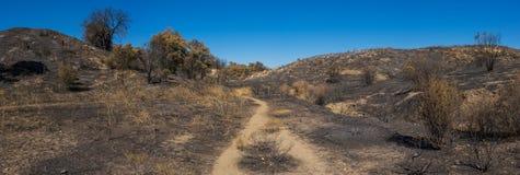 След в, который сгорели глуши Калифорнии Стоковые Фото