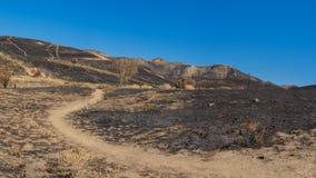 Тропа в, который сгорели холмах Стоковая Фотография