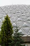 Геодезический купол за деревьями Стоковые Фотографии RF