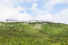 Зеленые величественные горы Стоковое Изображение