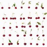 在白色安排的许多成熟红色樱桃 库存图片