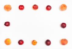 从成熟油桃和桃子的框架 库存照片